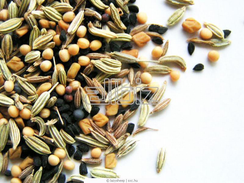 Купить Семена растений