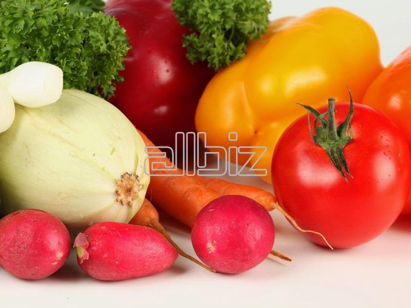 Купить Свежая овощная продукция в ассортименте