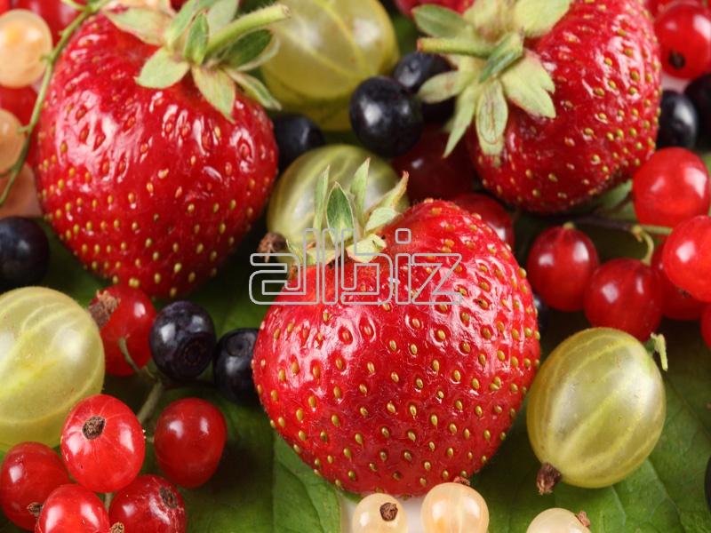 Купить Свежие ягоды в ассортименте