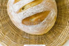 Bread floor troughs