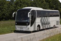 Автобусы для бизнеса