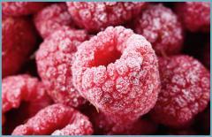 Raspberry (малина)