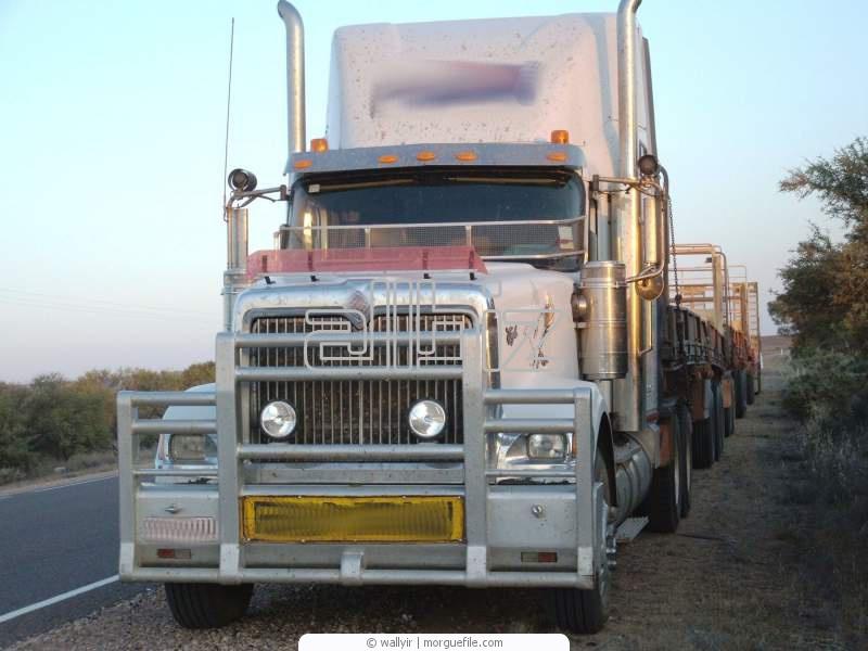 Заказать Перевозки грузов автомобильным транспортом