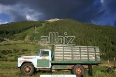 Перевозки автомобильные штучных и тарных грузов