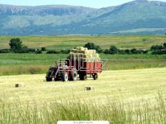 Услуги сельскохозяйственных машин