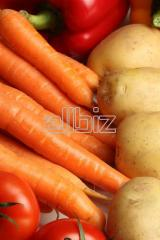 Складирование продуктов питания